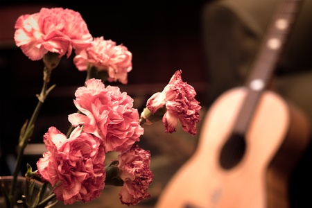 red carnation: A bouquet of pink carnations with a guitar on the background