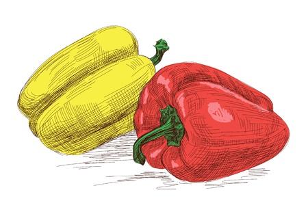 pepper Stock Vector - 14162518