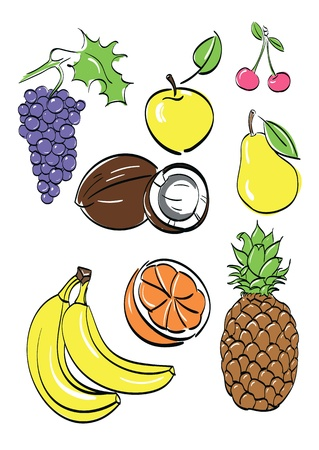 coco:  different fruits set illustration