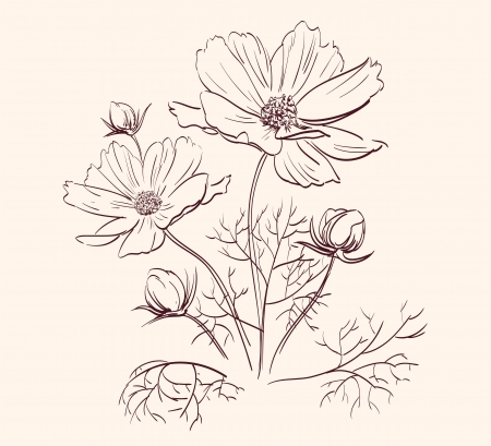 pencil plant: Beautiful Flowers Border  vector illustration