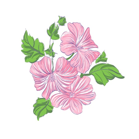 Beautiful Flowers pink illustration Stock Vector - 14770673
