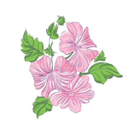 Beautiful Flowers pink illustration Stock Vector - 14770673