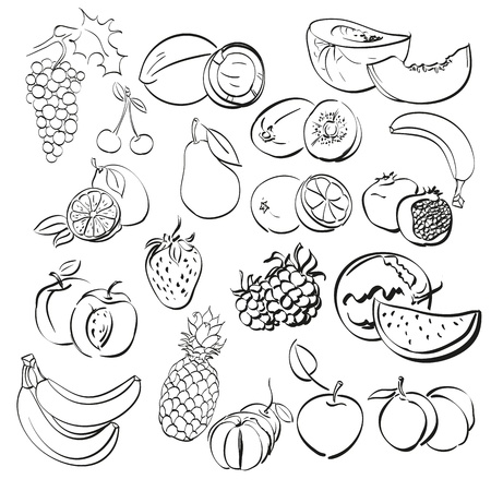 different fruits set illustration Stock Vector - 17982743