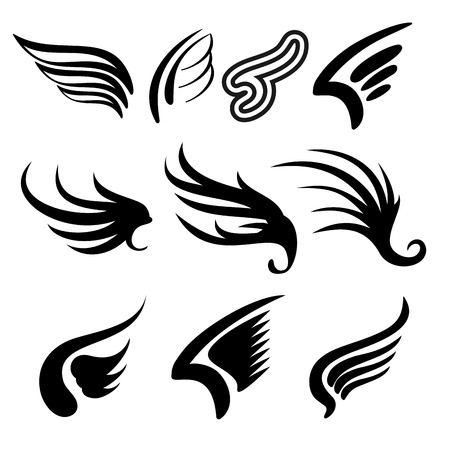 drawing dove: Wings  set   illustration