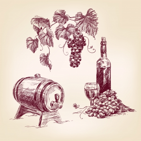 wine collection hand drawn vintage  vector illustration Illustration
