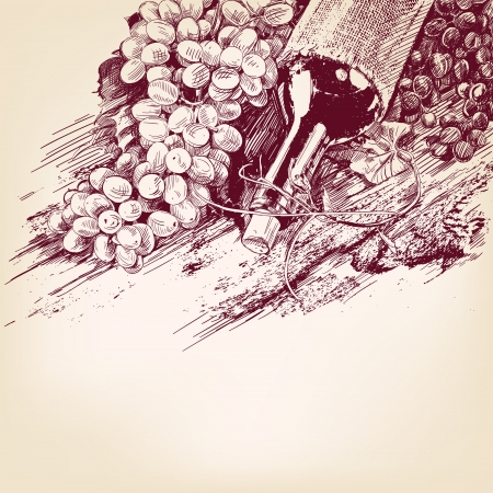 grapes with a bottle of wine hand drawn vector illustration