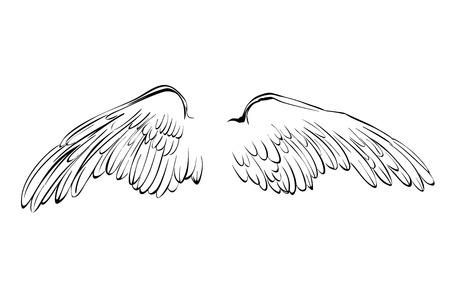 tatouage ange: Vecteur de bande dessinée ailes de collection croquis illustration