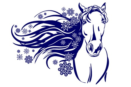 head of horse cartoon vector  illustration Vector