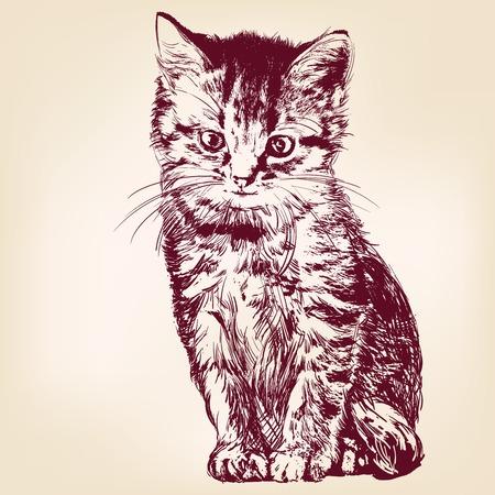猫 - 分離した手描きベクトル イラストレーション