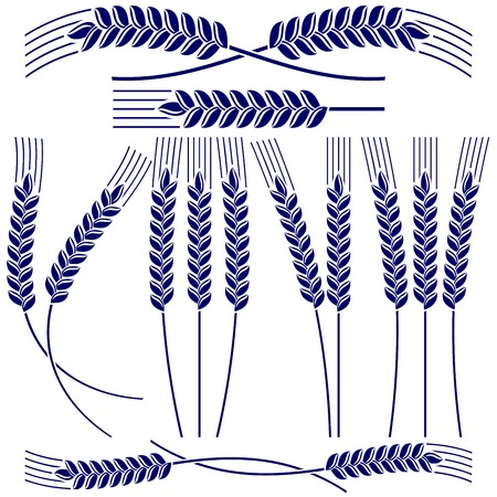 Ears of wheat and rye  icon  set vector  illustration Vector