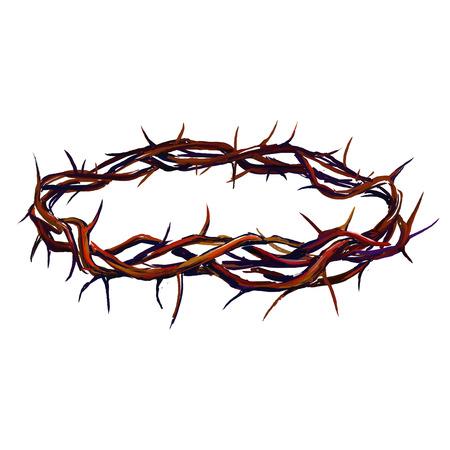 crown of thorns: corona de espinas ilustraci�n vectorial dibujado a mano acuarela pintada Vectores