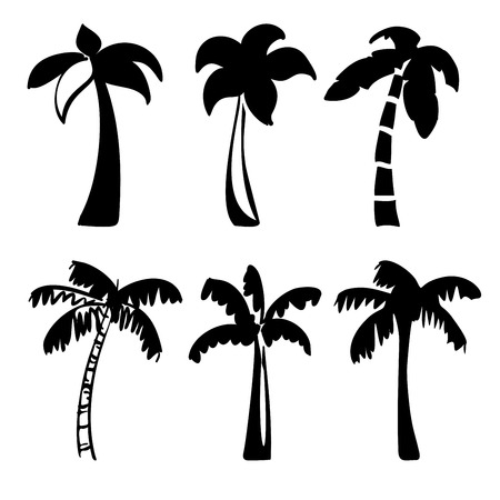 subtropical: palm  icon sketch collection cartoon vector illustration Illustration