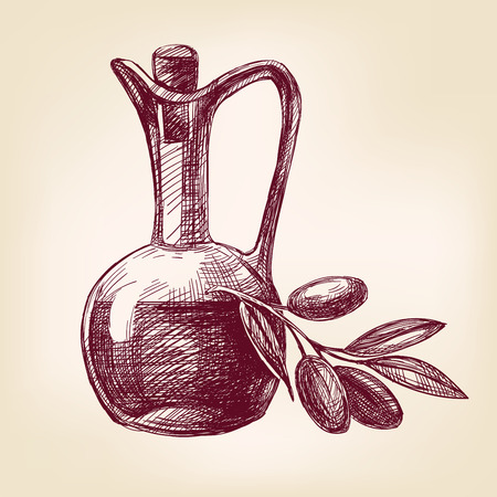 olive oil: olive oil with olives hand drawn vector llustration realistic sketch