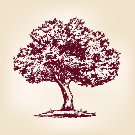 family on grass: Tree hand drawn vector llustration realistic sketch