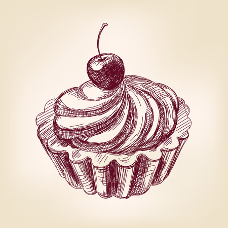 buttercream: Cherry cupcake hand drawn vector llustration realistic sketch
