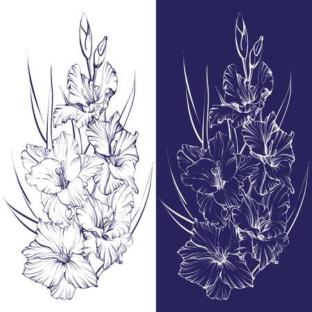 floral blooming gladiolus hand drawn vector illustration sketch
