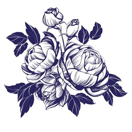 floral blooming rose branch hand drawn vector illustration sketch Illustration