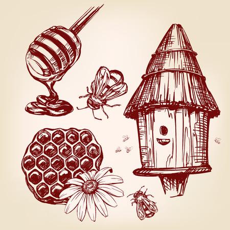 honey elements set hand drawn vector llustration realistic sketch