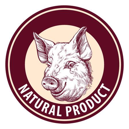 porcine: pig hand drawn vector llustration sketch. logo design template. farm