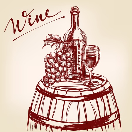 ripened: collection wine hand drawn vector llustration realistic sketch Illustration