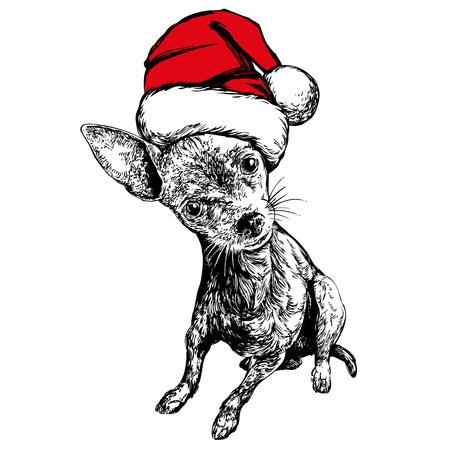 Dog in Santa stocking hat, Santa Claus, Christmas symbol hand drawn vector illustration realistic sketch.