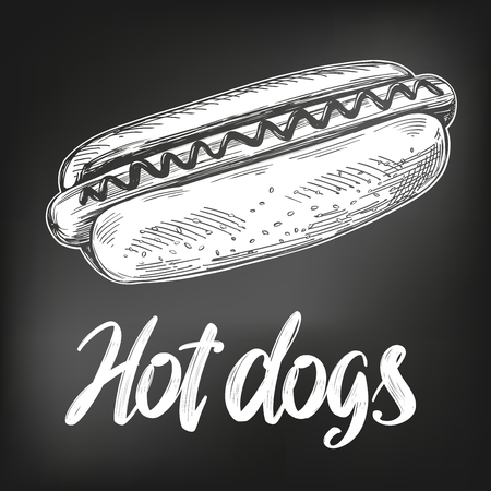 Hot dog fast food, hand drawn vector illustration sketch. chalk menu. retro style