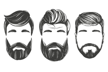 Bearded man in profile, barbershop, hairstyle, haircut, hand drawn vector illustration realistic sketch.