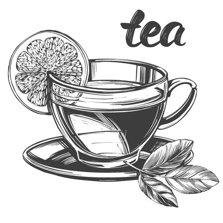 Cup of tea with lemon isolated on white background hand drawn vector illustration realistic sketch