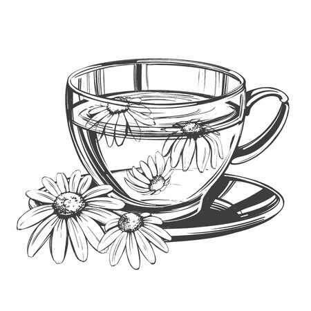 Cup of tea with chamomile isolated on white background hand drawn vector illustration realistic sketch  イラスト・ベクター素材