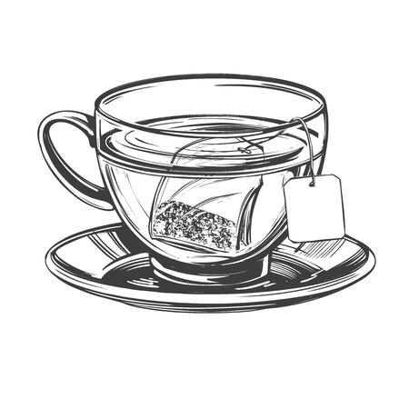Cup of tea with brewed tea bag isolated on white background hand drawn vector illustration realistic sketch Ilustração