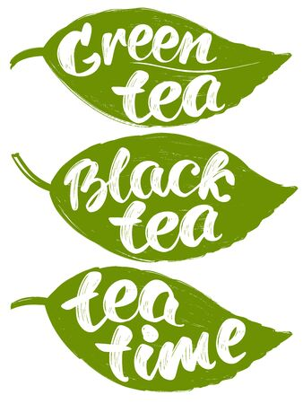collection with label tea leaves isolated on white background hand drawn vector illustration sketch Иллюстрация