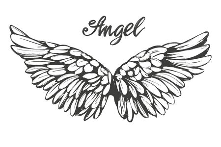 Angel wings icon sketch, religious calligraphic  vector illustration 矢量图像