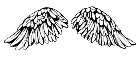 Angel wings, bird wings collection cartoon hand drawn vector illustration sketch