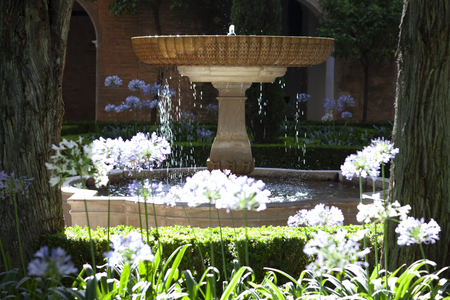 Fountain in Alhambra lit by the sun and surrounded by flowers