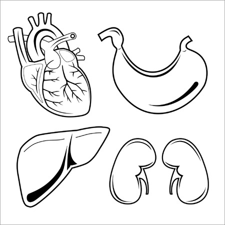 gut: Vector medical icons. Black and white. Simply change. Other medical icons you can see in my portfolio.