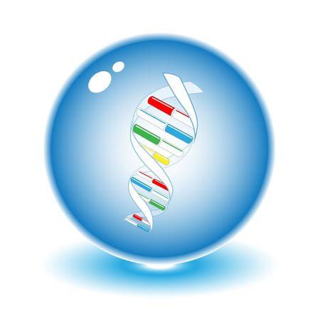 tu puedes: Vectores de ADN ilustraci�n. Simplemente el cambio. Otros m�dicos vectores se puede ver en mi cartera.