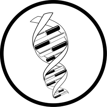 csigavonal: Vector DNA icon. Black and white. Simply change.