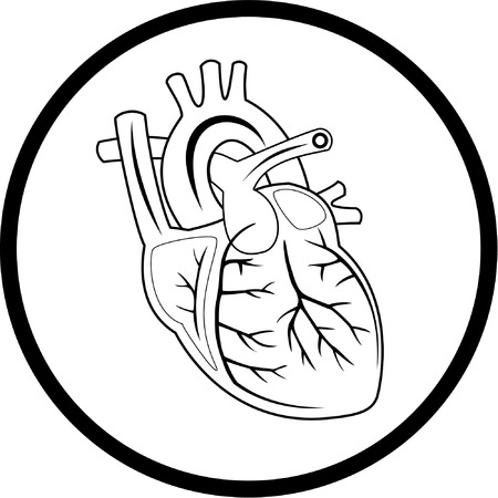 human internal organ: Vector heart icon. Black and white. Simply change.