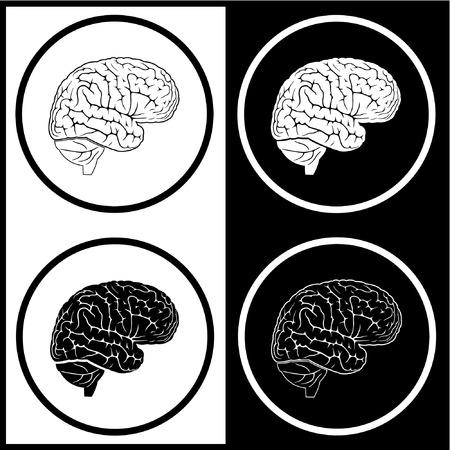 medicina interna: Vector iconos cerebro. Blanco y negro. Simplemente el cambio.