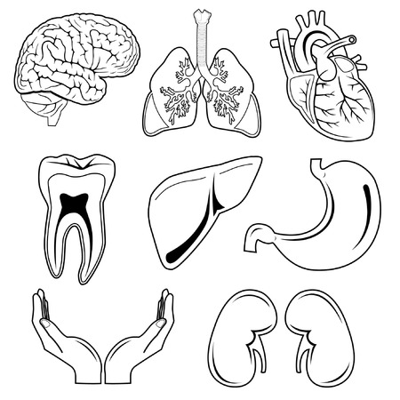 gut: Vector medical icons. Black and white.