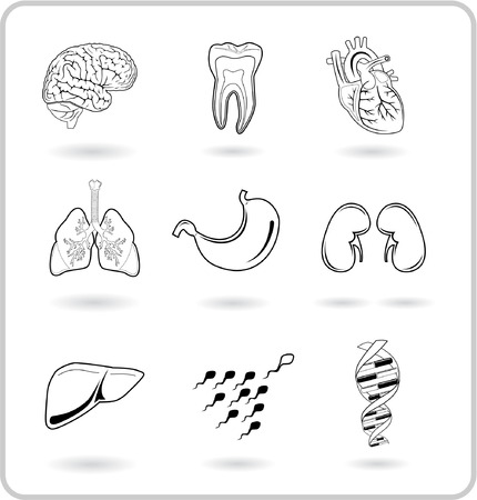 cerebro blanco y negro: M�dico iconos. Blanco y negro. El formato vectorial est� en mi cartera. Vectores