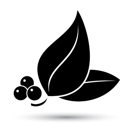 Vector leaf icon Vector