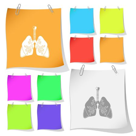Lungs.  Vector