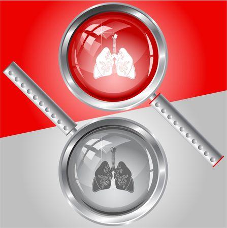 organi interni: Polmoni. lente di ingrandimento.
