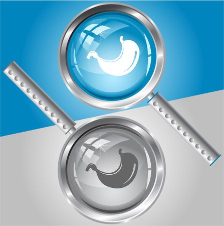 Stomach. magnifying glass. Stock Vector - 6731889