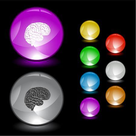 organos internos: Cerebro. elemento de la interfaz.  Vectores
