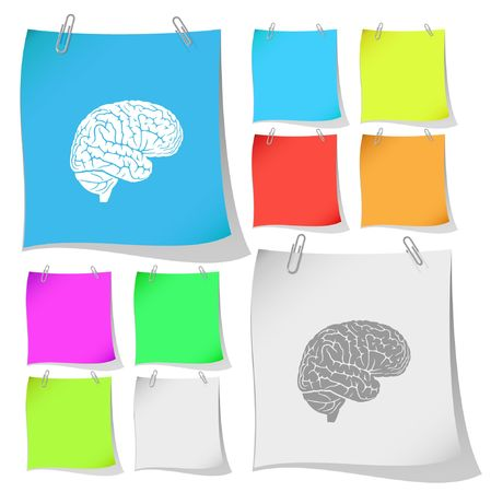 Brain. note papers. Stock Vector - 6732593