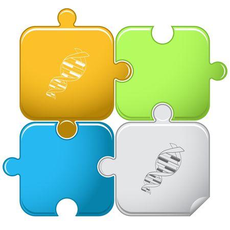 DNA. puzzle. Vector