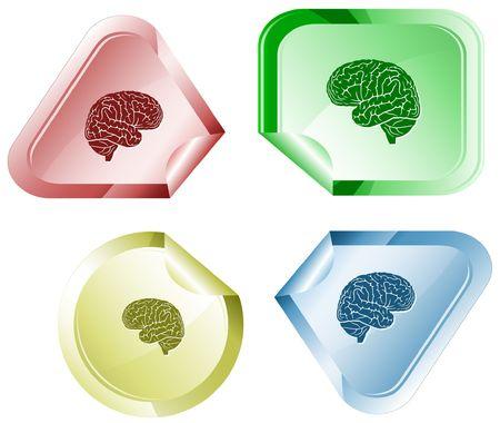 Brain.  sticker. Stock Vector - 6774735