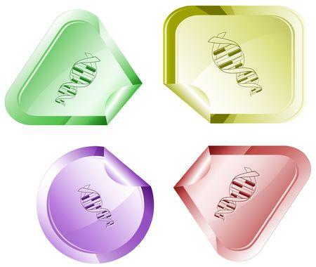 declinate: DNA. sticker. Illustration